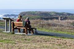 在海岸的野餐 库存图片