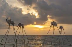 在海岸线的大象雕塑日落Senato海滩俱乐部的 免版税库存照片