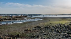 在海岸线3的小河 库存照片