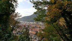在海得尔堡老镇红色屋顶的看法从小山的 免版税库存图片