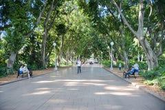 在海德公园的步行小径 库存照片