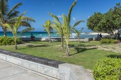 在海斯廷斯的海滨人行道晃动巴巴多斯 免版税库存图片
