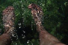 在海水的人腿 库存图片