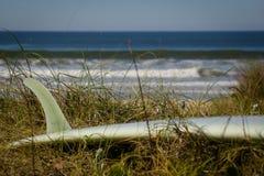 在海洋前面的Longboard 免版税库存图片