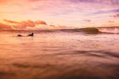 在海洋挥动在明亮的日落或日出与冲浪者 与温暖的日出颜色的波浪 免版税库存图片