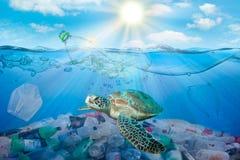 在海洋环境问题的塑料污染 乌龟能吃弄错他们的塑料袋为水母 肮脏的水概念 库存照片