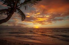 在海洋的日出在坎昆 墨西哥 图库摄影