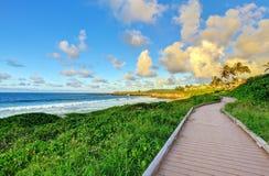 在海洋路径日落附近的毛伊 库存图片