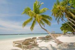 在海洋附近的美丽的热带晴朗的海滩有棕榈树和sunbeds的 免版税库存图片