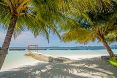 在海洋附近的美丽的热带晴朗的海滩有棕榈树的 库存照片