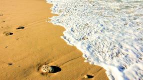 在海浪线的海滩沙子 免版税库存照片