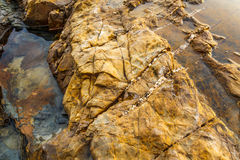 在海海滩的岩石 免版税库存照片