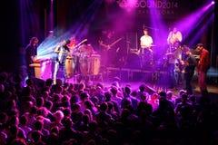 在海涅肯Primavera声音的Antibalas (afrobeat带)表现2014年 免版税库存图片