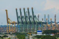 在海港的起重器起重机,新加坡 库存图片