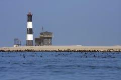 在海湾小船行程walvis附近 免版税库存图片