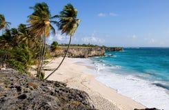 在海湾海滩珊瑚底层的峭壁之上 免版税库存照片