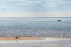 在海湾的小船在一个夏日 库存图片