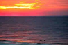在海湾的日出 免版税库存照片