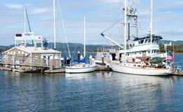 在海湾的船 免版税库存照片