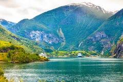 在海湾Sognefjord的游轮在Flam挪威 免版税库存照片