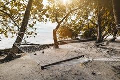 在海滨的两个吊床 图库摄影