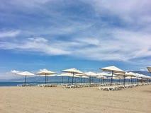 在海滩俱乐部的伞 免版税库存图片