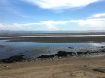 在海滩做海被污染的垃圾和塑料废物 免版税图库摄影