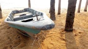 在海滩停放的燕麦 库存照片