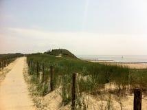 在海滩后的沙丘 免版税库存照片