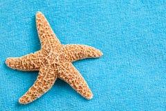 在海滩毛巾的海星 免版税库存照片