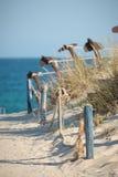在海滩沙丘的走道   库存照片