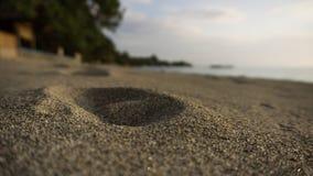 在海滩沙子的人的踪影 免版税库存图片