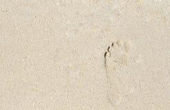 在海滩沙子的女性赤足印刷品 海滨与文本地方的横幅模板 库存图片