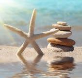 在海滩沙子的海星 库存图片