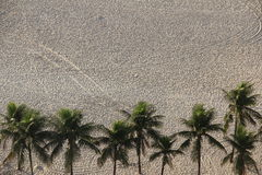 在海滩沙子的路径 库存图片