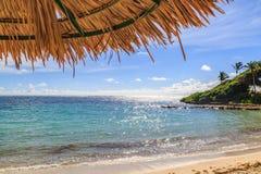 在海滩的一把遮阳伞 库存照片