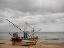 在海滩的乌贼渔船在多云早晨天,有椰子树背景 免版税图库摄影