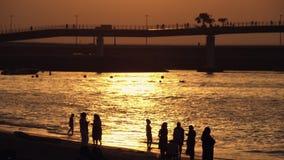 在海滩的人群剪影在日落 股票视频