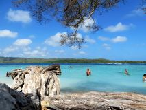 在海滩的假日,委内瑞拉 免版税库存照片