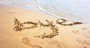 在海滩的再见 库存照片
