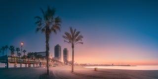 在海滩的剧烈的sunrset有棕榈的巴塞罗那 库存照片