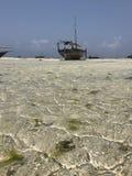 在海滩的单桅三角帆船桑给巴尔 免版税库存照片