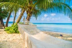 在海滩的吊床 库存照片