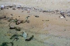 在海滩的垃圾,环境 免版税库存图片