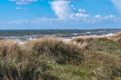 在海滩的大风天与波浪和蓝天 库存照片