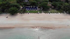 在海滩的太阳床 许多被配对的太阳懒人鸟瞰图与伞的在与干净的沙子的离开的海滩 股票视频