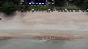 在海滩的太阳床 许多被配对的太阳懒人鸟瞰图与伞的在与干净的沙子的离开的海滩 影视素材