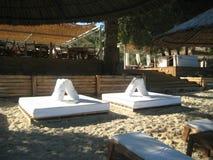 在海滩的太阳床 库存图片