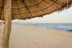 在海滩的太阳树荫 免版税库存照片