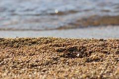 在海滩的小小卵石 免版税库存照片